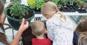 Garden Centre Retail Children's Gardening