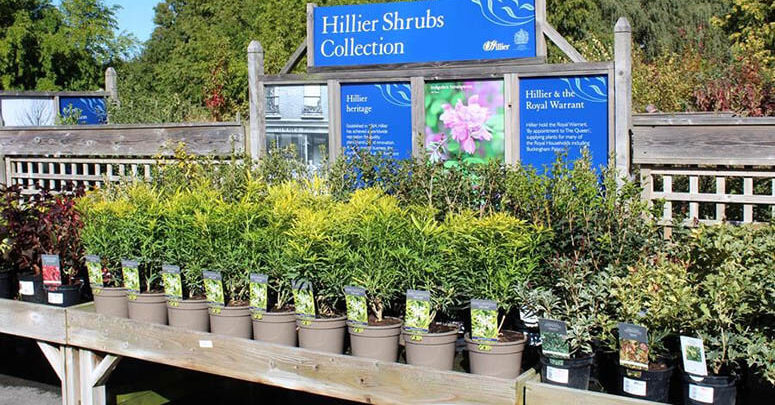 Plant Pot Fully Recyclable Introduced To The Uk Through Hillier Nurseries